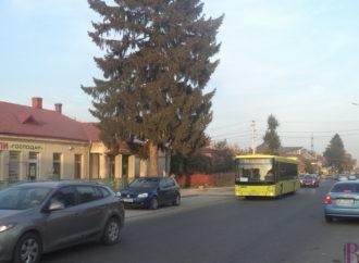 Поміж Львовом і Винниками курсуватимуть ще 12 нових великогабаритних автобусів
