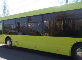 Винниківчани просять відновити рух автобусів №40 і 5А через ліс