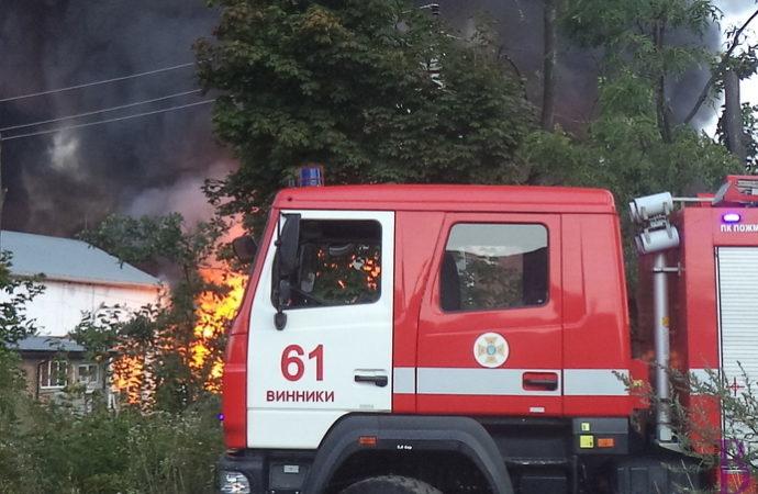 Загиблий у вогні пенсіонер із села Чишки багато років працював у Винниківському лісництві