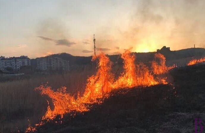 У Винниках горіла суха трава: 61-а ДПРЧ врятувала від вогню три будівлі (фото)
