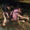 Винниківські надзвичайники врятували корову, яка впала в глибокий рів на вул. Дмитерка (фото)