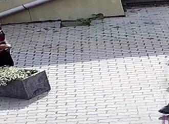 Встановлені Винниківською міською радою камери відеоспостереження «засікли» перших злодіїв
