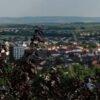 Сучасні Винники: за картинами Ярини Каторож створили відео про мальовниче місто