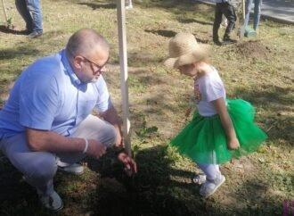 «Солідарні з природою»: як у Винниках діти висаджували молоді клени та дуби у Вайберг-парку